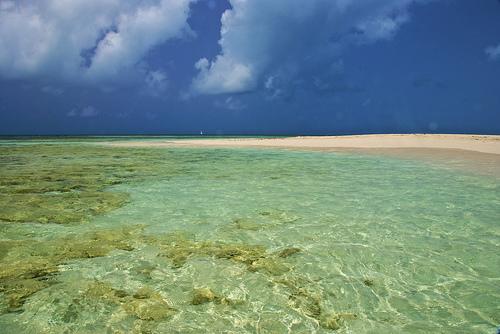 Antigua dive vacations