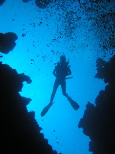 diving-directory-01