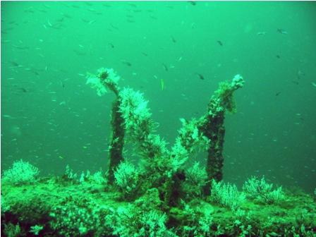 caribbean-wreck-diving-01