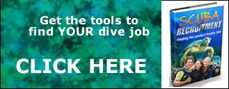 Perfect Dive Job-02
