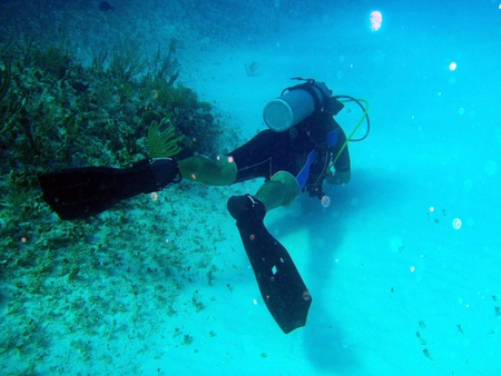 pictures of scuba divers-03