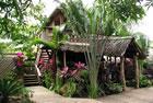 Roatan Honduras - Tranquilses Eco Lodge & Dive Center