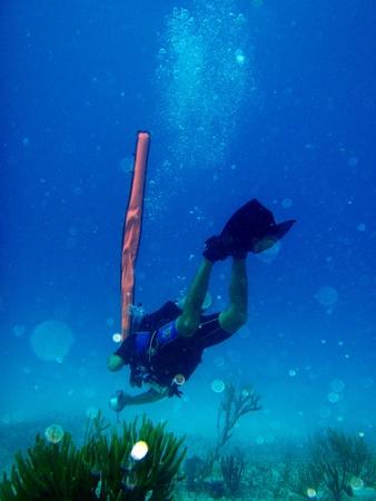 scuba-diving-pictures-03
