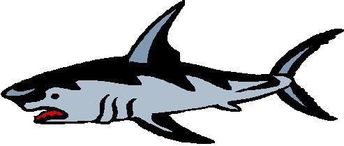 Shark Clipart, Shark Clip Art