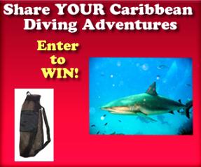 Caribbean Dive Travel