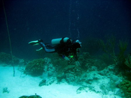 pictures of scuba divers-02